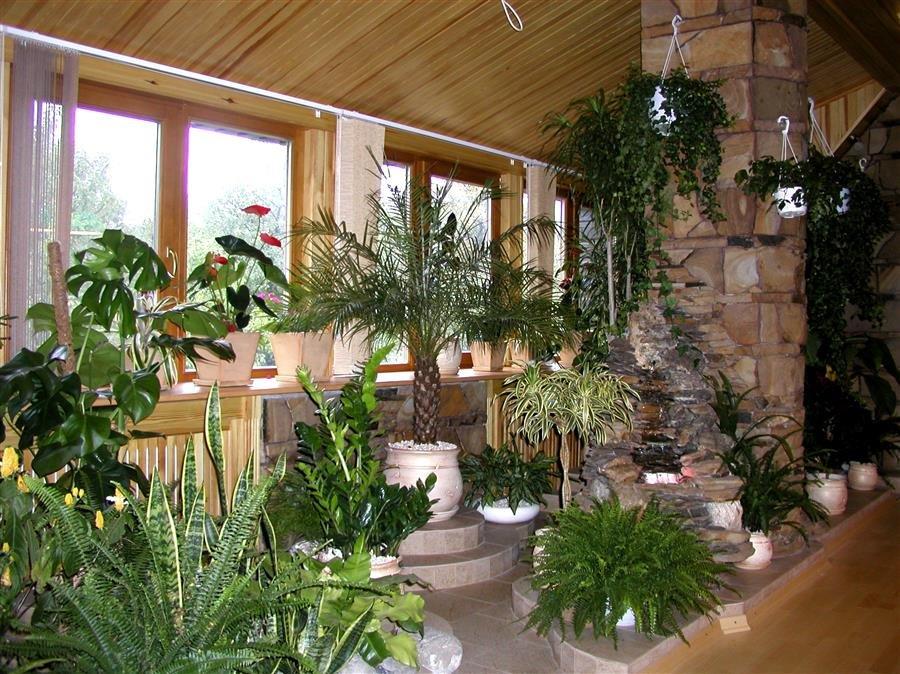 Как сделать своими руками сделать зимний сад
