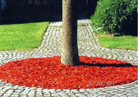 Цветники на ваш вкус - раскрась мечтой свой участок. Фото цветников (клумб).